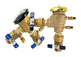 Pressure Vacuum Breakers (PVB)