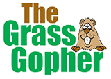 Grass Gopher