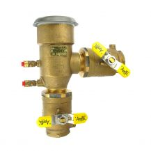 "Conbraco 4A-500 Freeze Resistant PVB Backflow Preventer 2"" FPT 