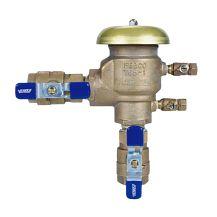 "Febco 765 PVB Backflow Preventer 1"" FPT | FE765-100"