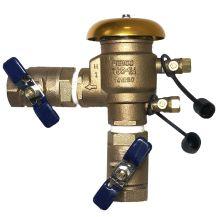 "Febco 765 PVB Backflow Preventer 1-1/4"" FPT | FE765-125"