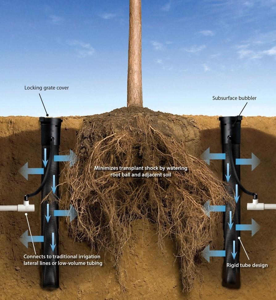 Rain Bird 0.5 GPM Root Watering System